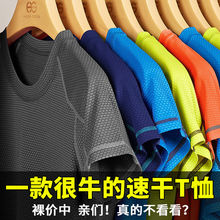 Sheng Tianlong Fast Drying Clothes Short-sleeved Round-collar Running Fitness Women's Large Summer Fast Drying Clothes Outdoor Sports T-shirt