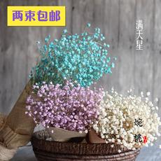 Засушенные цветы Wan Tao