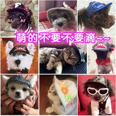Шапки для собак и кошек Cheepet