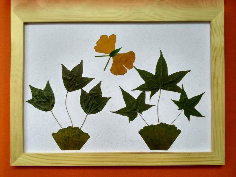 画作业幼儿园粘贴画树叶秋天/手工画手工.树叶树叶儿diy材料树叶
