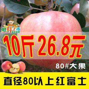 新鲜苹果水果批发包邮红富士嘎啦苹果10斤装包邮山萍果水果苹果新鲜