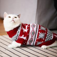 Cat clothes, baby cat, baby cat, prevention of hair loss in autumn and winter, short pet, cat, winter clothes, thickened, warm and lovely