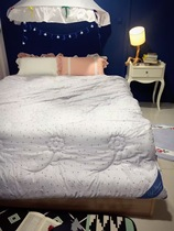 Clear fresh Daisy was the core spring and autumn double quilt plush feather thickened super soft modal sheets winter