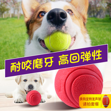 Dog toy ball bite resistant golden fur Teddy grinding tennis pet puppy small dog toy elastic ball
