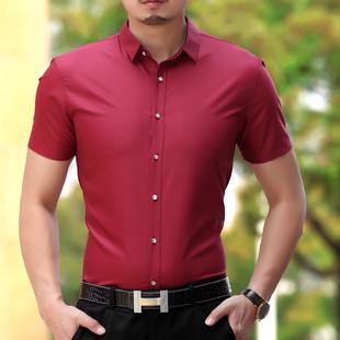 中年男士t恤短袖2015新款夏季純色條紋 翻領蠶絲棉商務男裝T恤