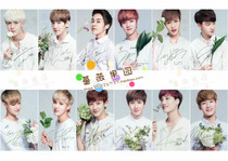 �֙C� EXO�׈D nature repubilc �ٷ��D