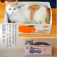 Набор игрушек для животных Create