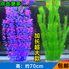 Exotic Aquarium 70cm