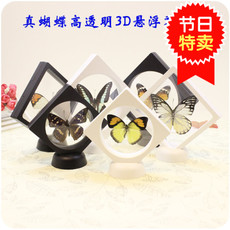 Baoji photo frame 3D PET